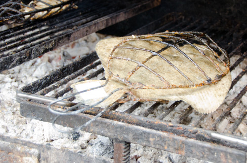 Grilling Turbot